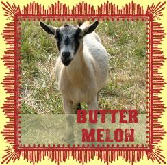 Butter_3